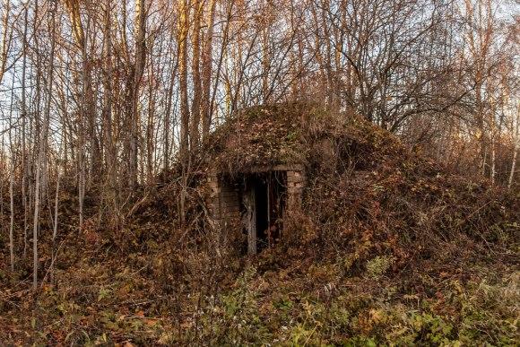 Bunkeriukas