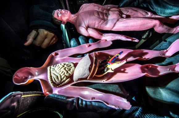 Žmogaus kūnas