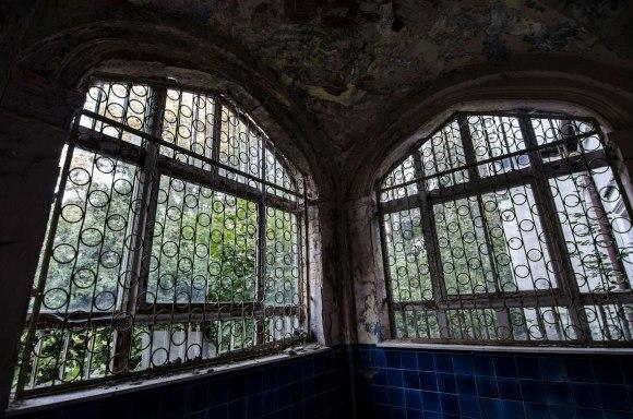 Oranžerijos langai