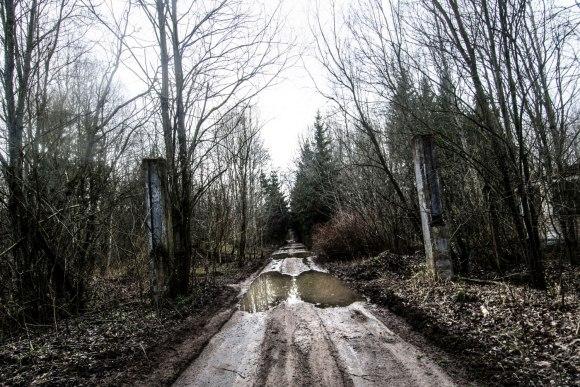 Keliukas į mišką
