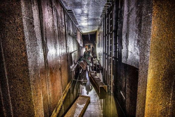 -9 aukšto koridorius