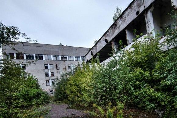 Gamta ir griuvėsiai
