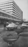 Taksi parkas 1983, J.Juknevičius