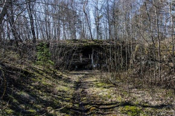 Keliukas prie forto