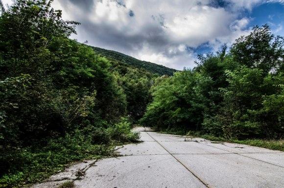Betoninis kelias