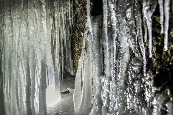 Ledas ant sienos
