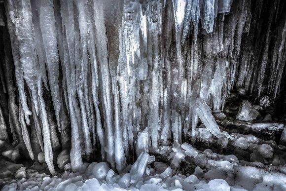 Ledo siena
